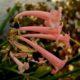 Cyrtanthus mackenii pink